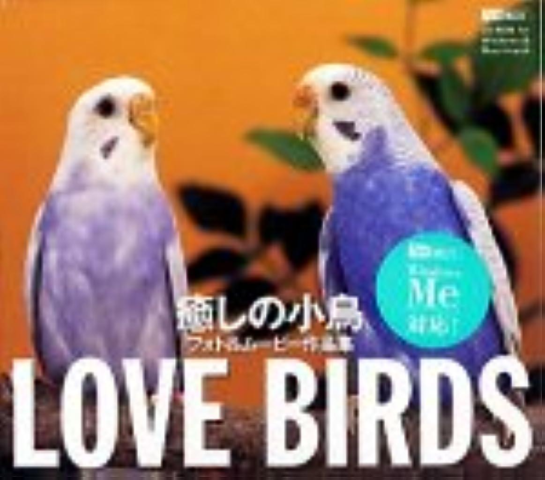 省略するヘア回復Love Birds 癒しの小鳥
