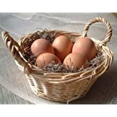 美野里たまご 加賀の朝日 25コ詰め 新鮮卵 健康卵