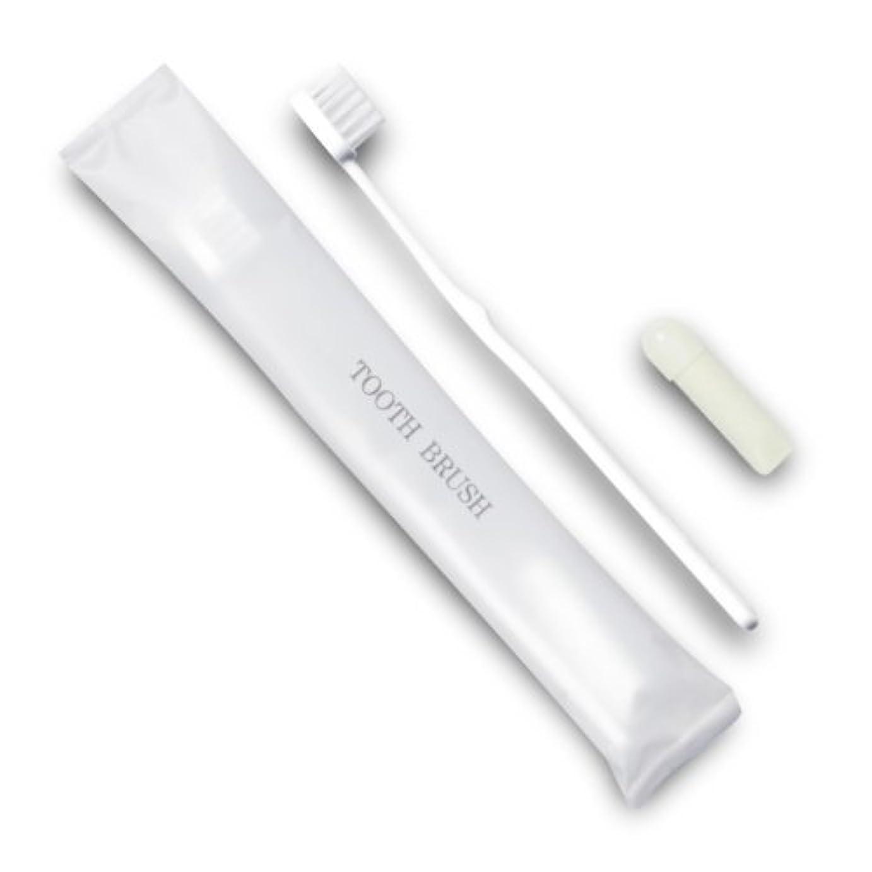 減る資本主義寄り添うホテル業務用歯ブラシ21穴(白)3gチューブ マット袋FタイプDX 700本