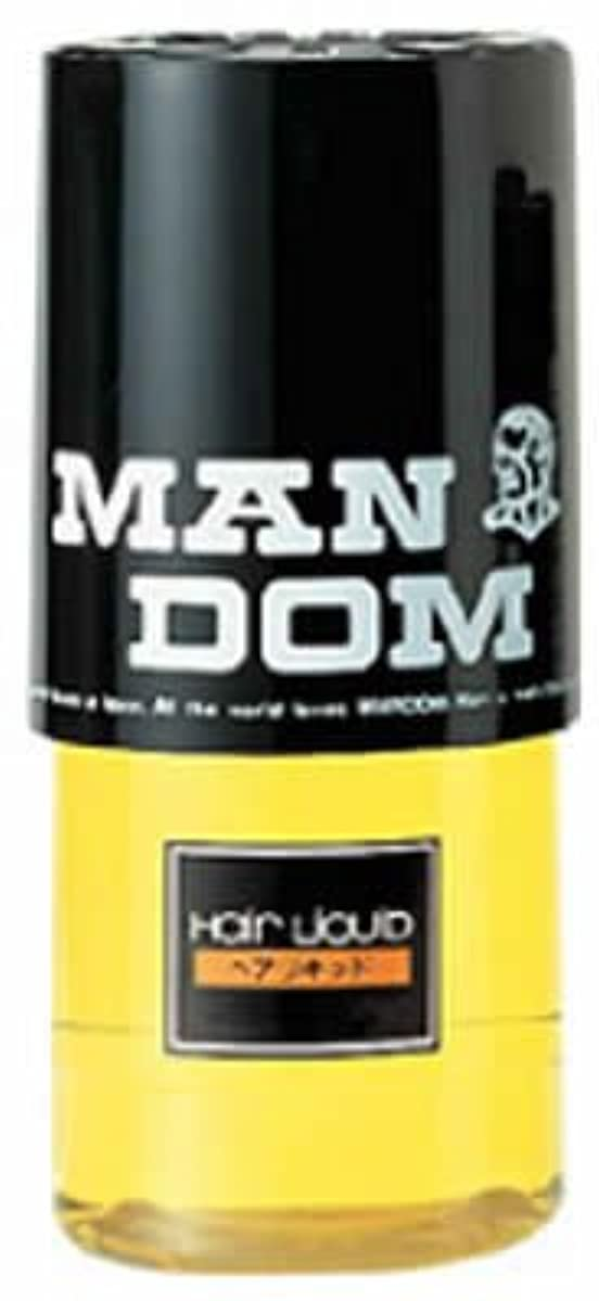 化粧主要な鉛筆マンダム ヘアリキッド 330ml【HTRC3】