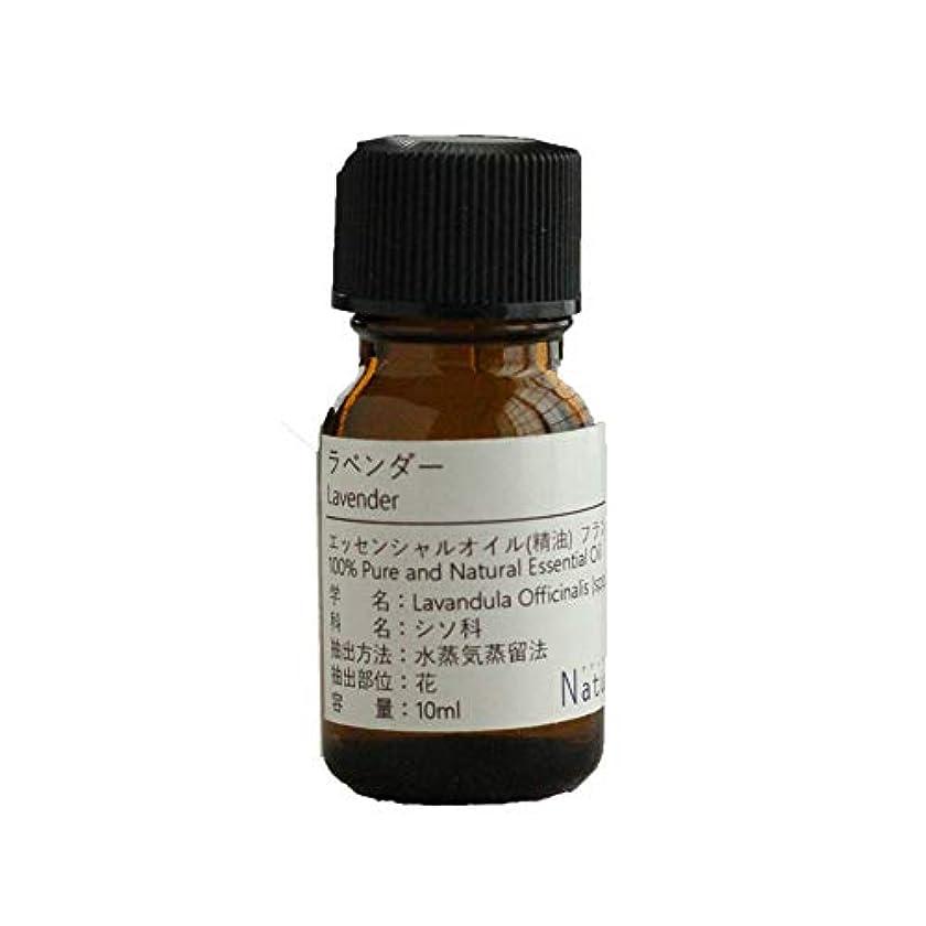 薄汚い強化する最終的にNatural蒼 ラベンダー/エッセンシャルオイル 精油天然100% (10ml)