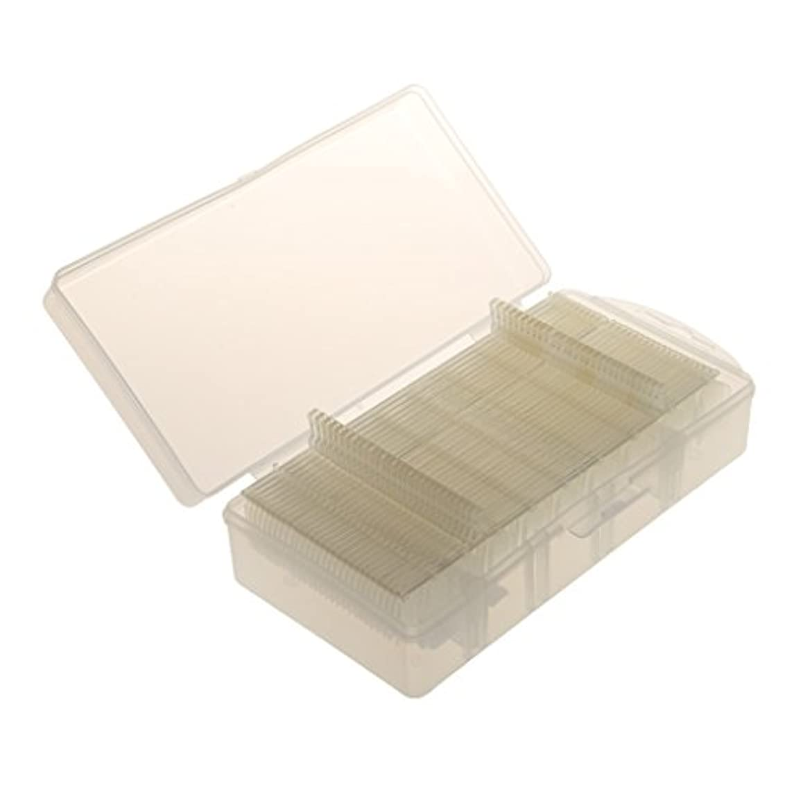 樹皮応援するブレイズDYNWAVE 箱が付いている300ピース/個自然なのフランスの釘のアクリルの人工的なネイルアートのヒント
