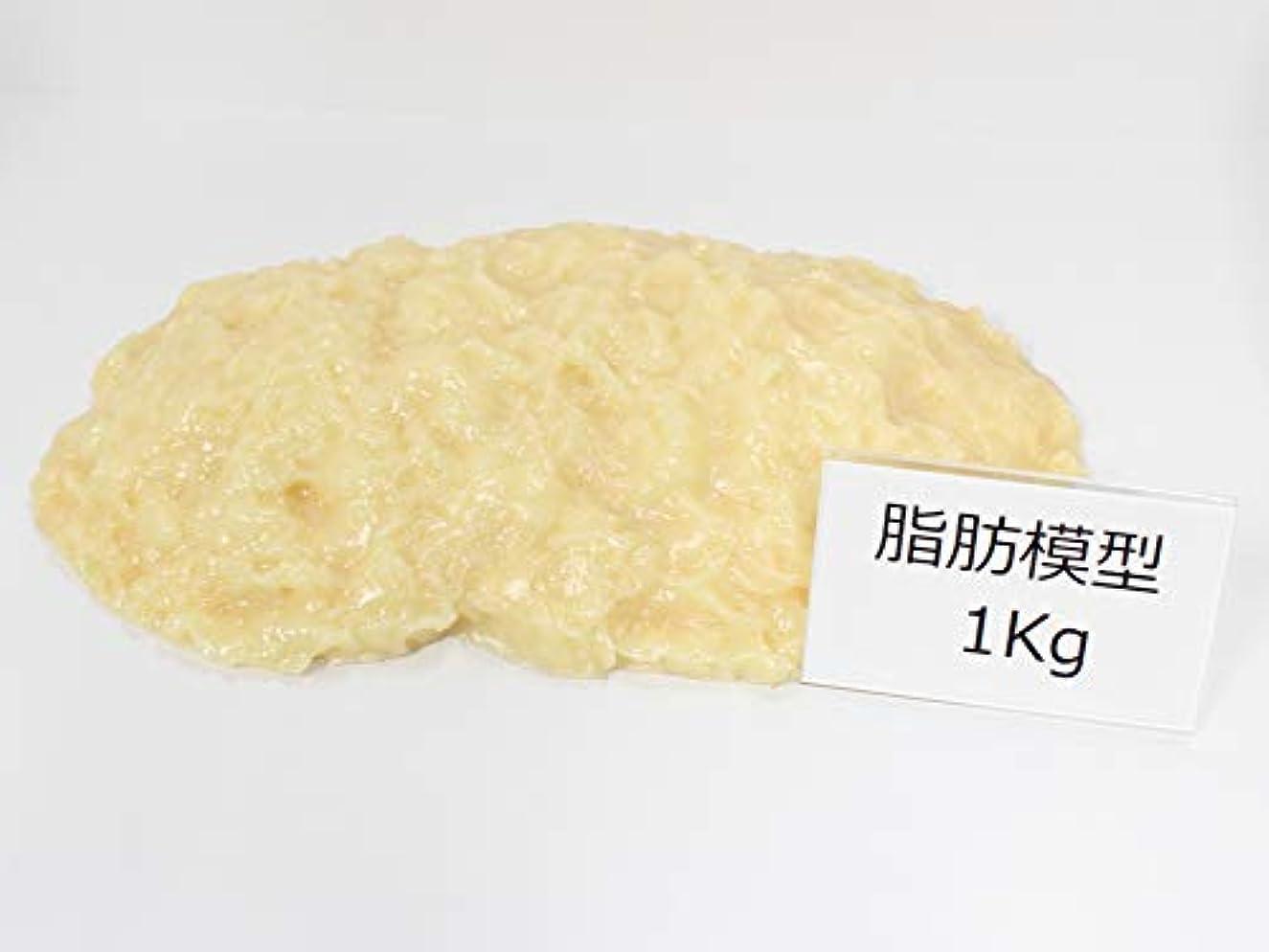 オーディション便益乱用脂肪サンプル 脂肪模型 1kg 食品サンプル 実物重量 ダイエット トレーニング フードモデル