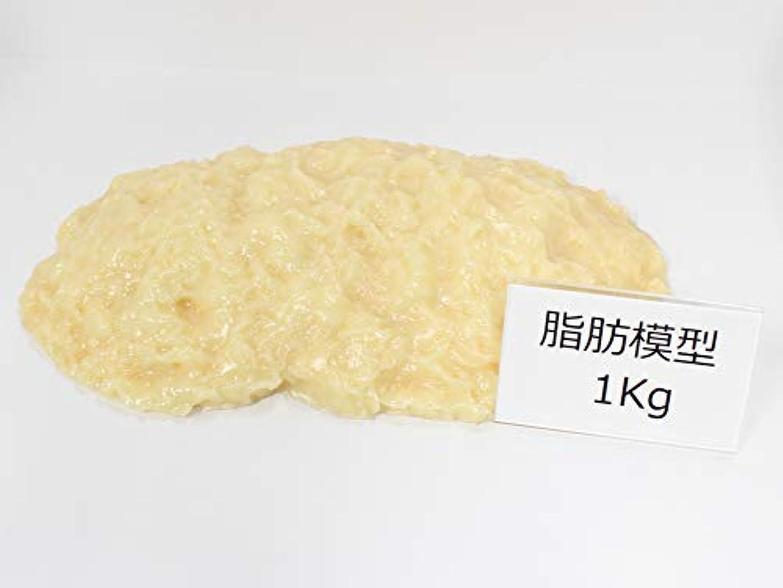 意志に反する惨めなイル脂肪サンプル 脂肪模型 1kg 食品サンプル 実物重量 ダイエット トレーニング フードモデル