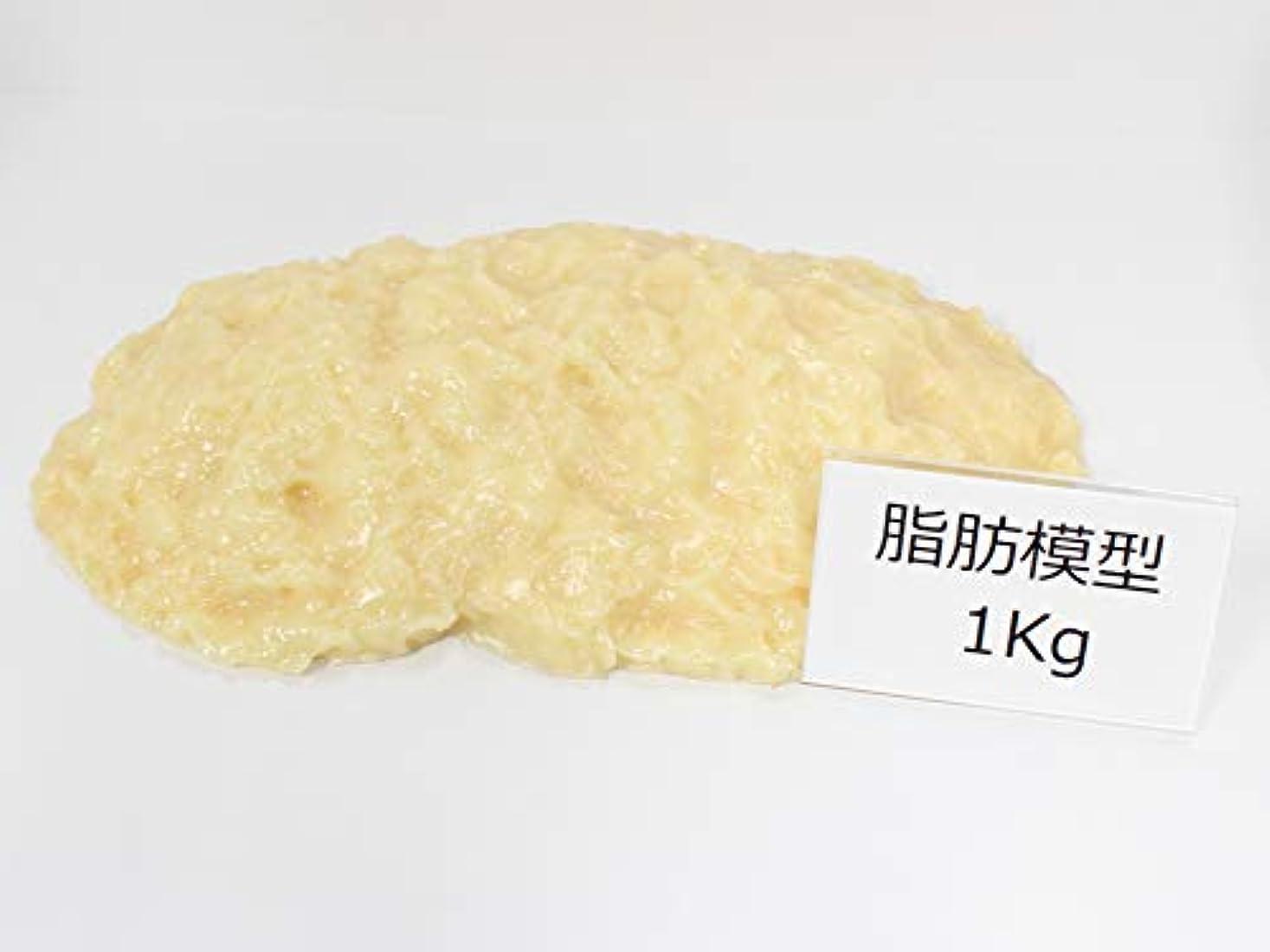 衝突違う耐える脂肪サンプル 脂肪模型 食品サンプル 実物重量 ダイエット トレーニング フードモデル (1kg)