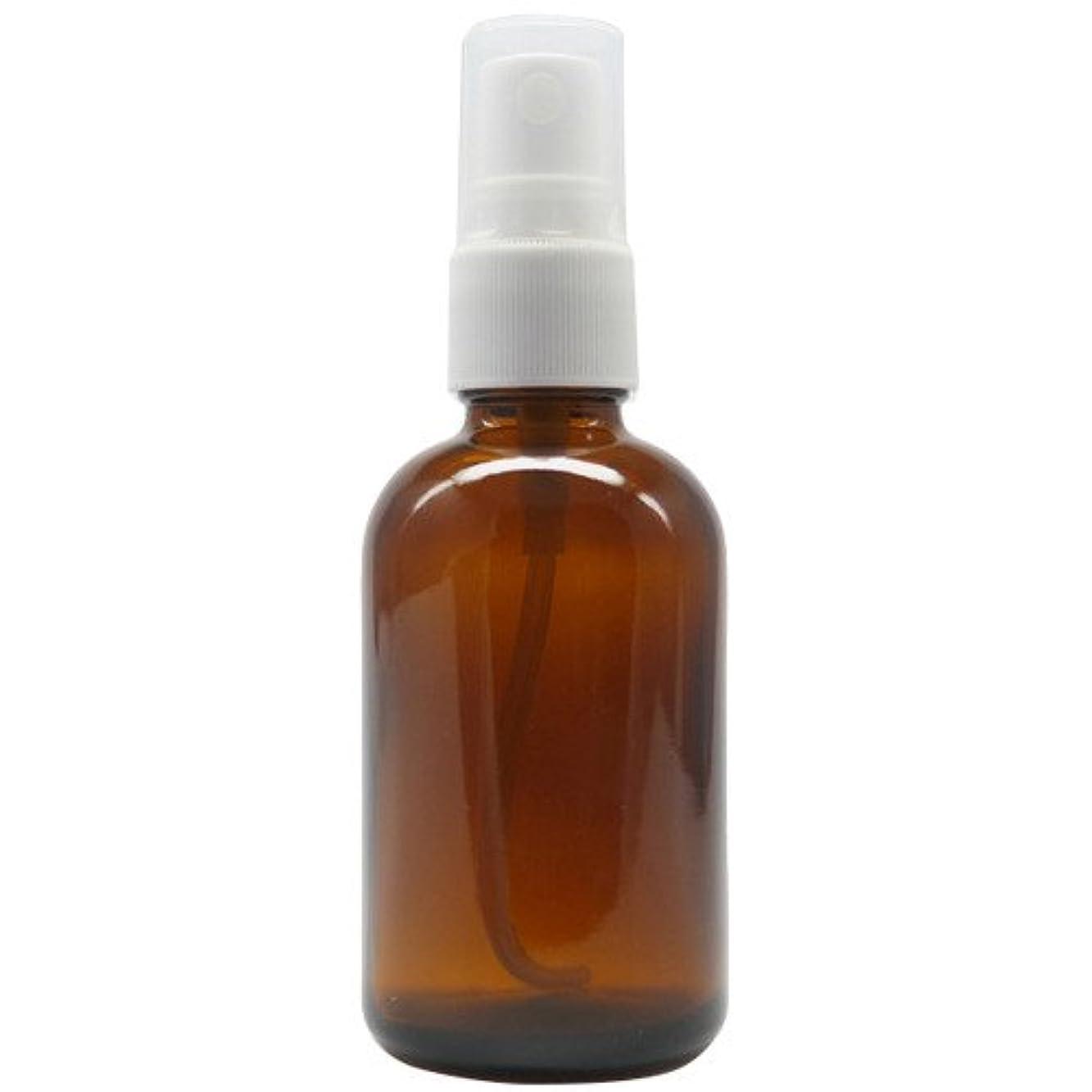 一般的に中毒死傷者アロマアンドライフ (D)茶褐色スプレー瓶60ml 3本セット