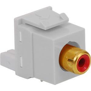 module- RCA idc-レッドinsert-ホワイト