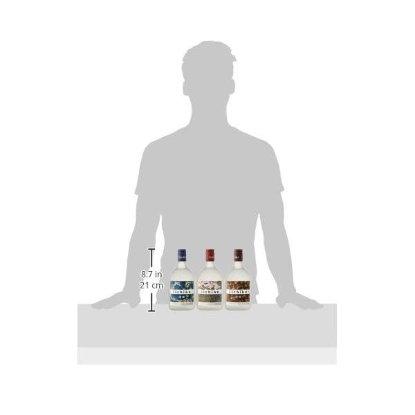 いいちこオリジナルギフト(ISV) 飲み比べ...の紹介画像11