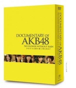 DOCUMENTARY OF AKB48 NO FLOWER WITHOUT RAIN 少女たちは涙の後に何を見る? コンプリートDVD-BOX【DVD4枚組】