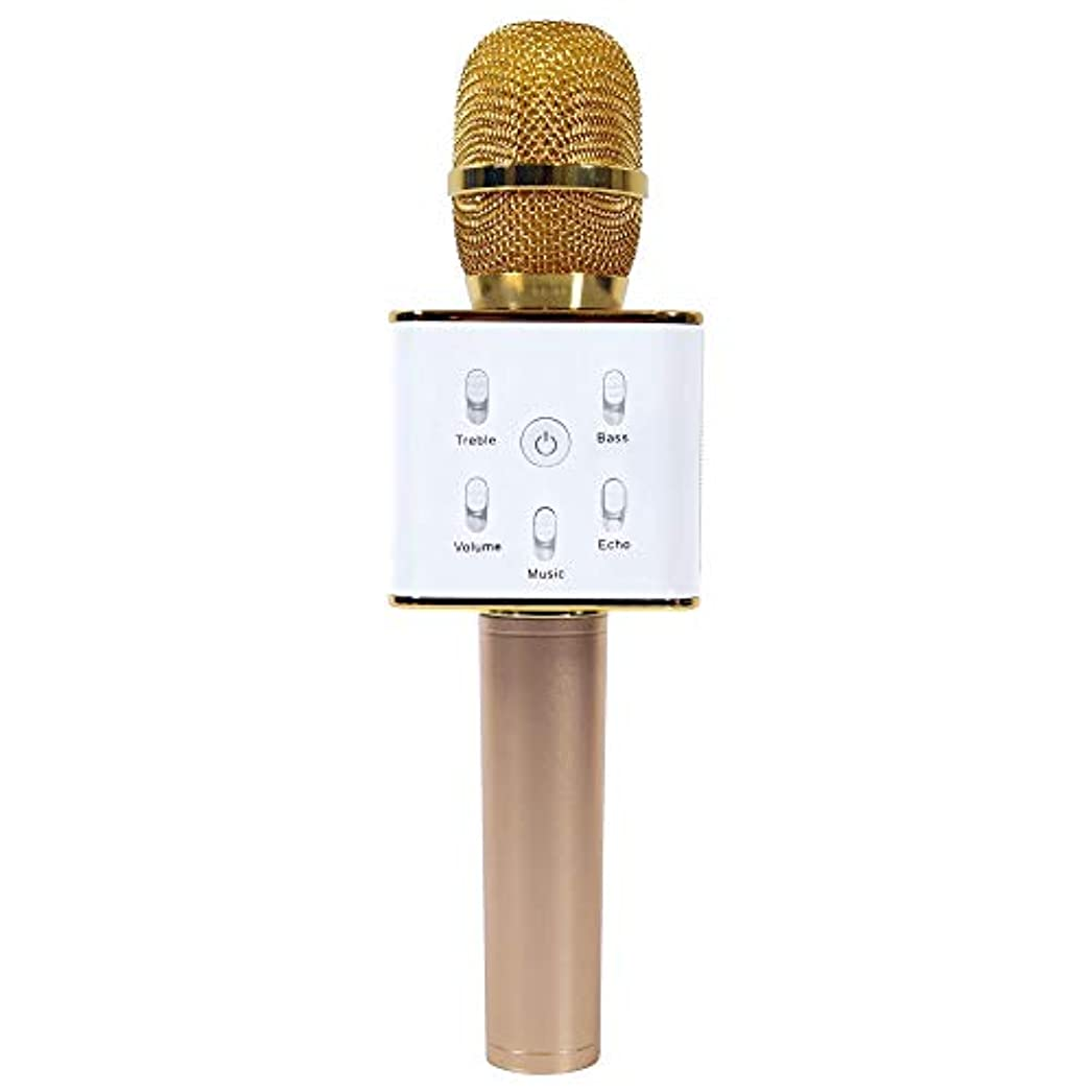 断言する反論キーFjiujin、ポータブルワイヤレスカラオケKTVマイクマイクハンドヘルドコンデンサーマイク付きワイヤレスBluetoothスピーカーSinging Stereo(color:GOLDEN)