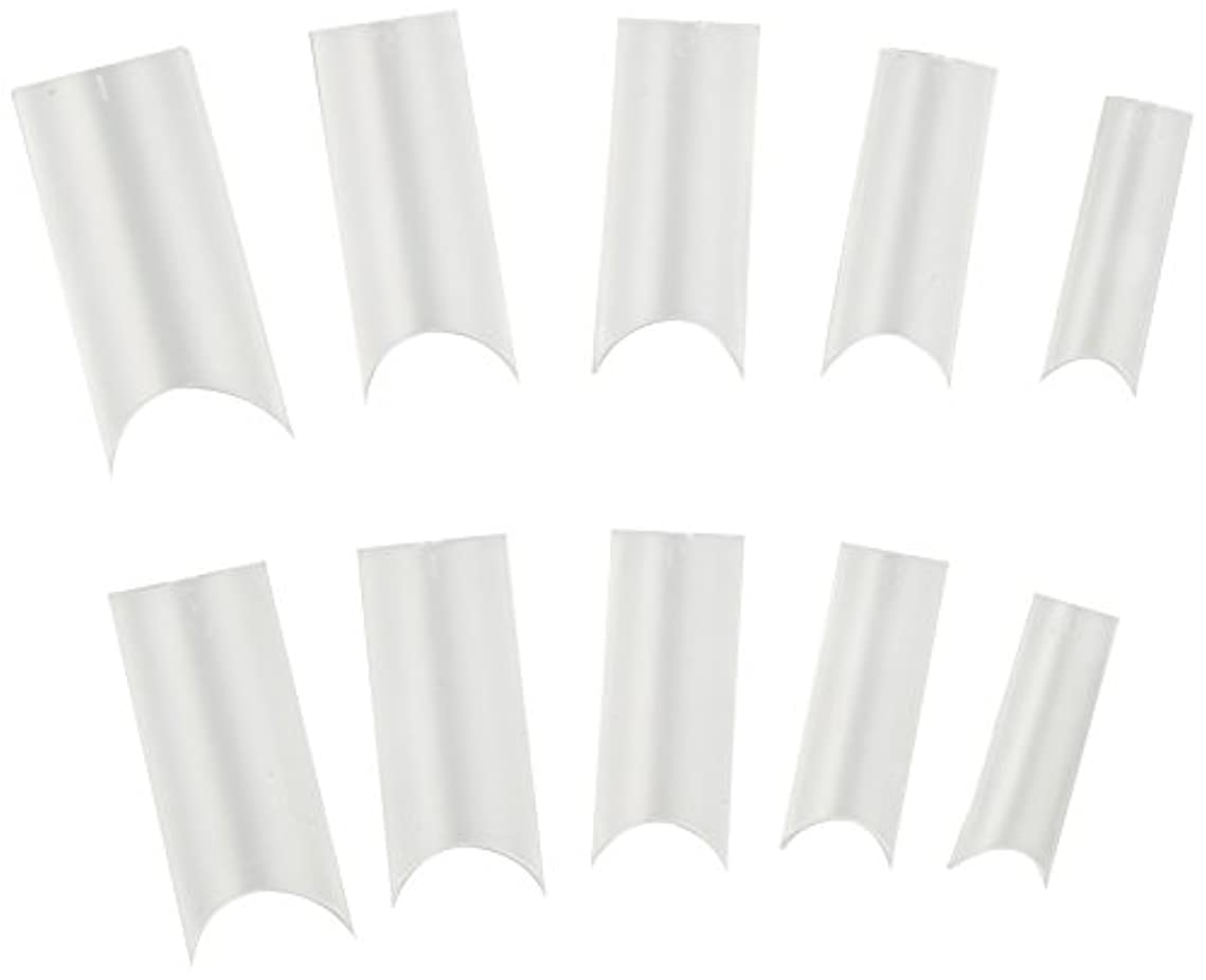 地殻常に可塑性アイスジェル ジェルネイル  クリアチップ100
