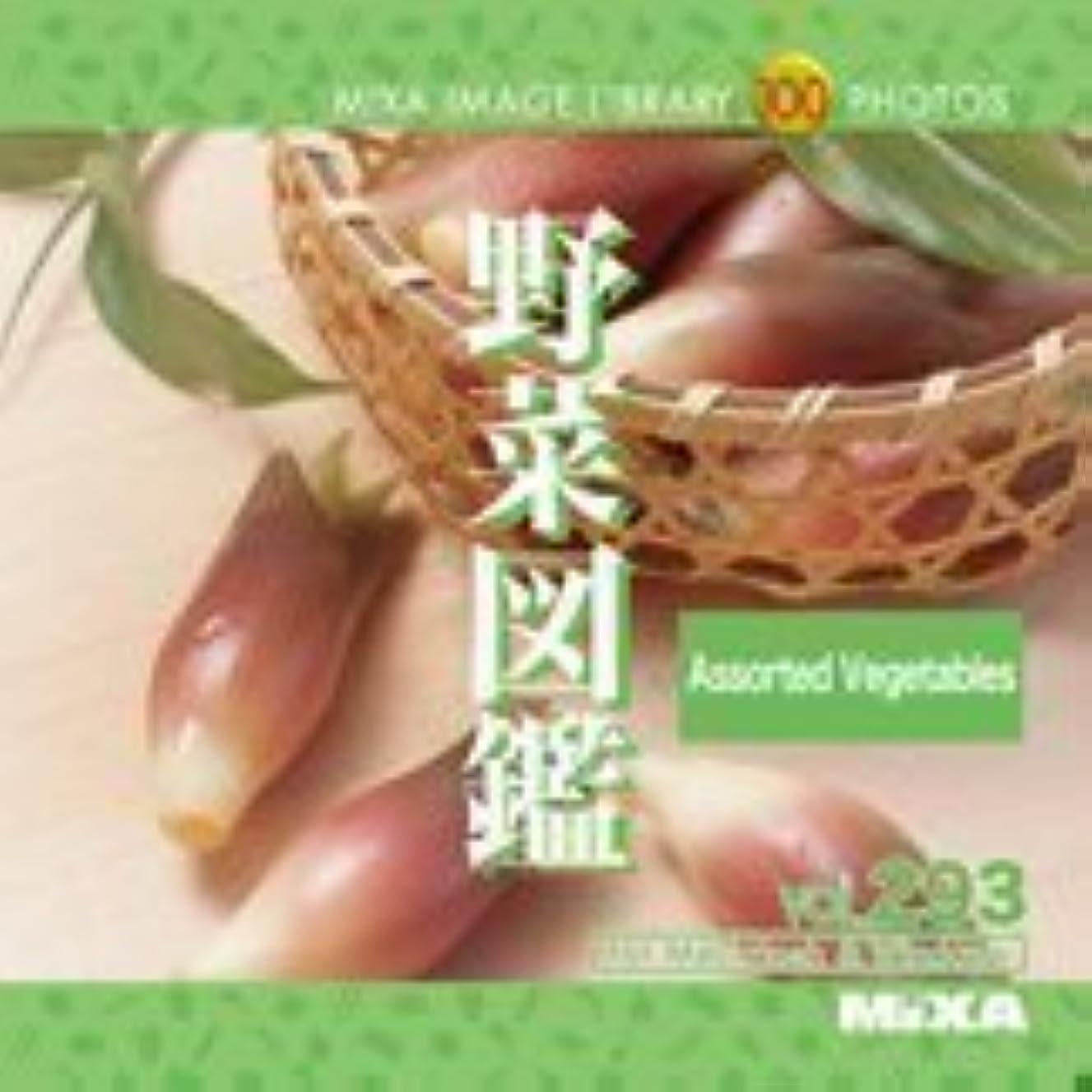のみ傀儡付属品MIXA IMAGE LIBRARY Vol.293 野菜図鑑