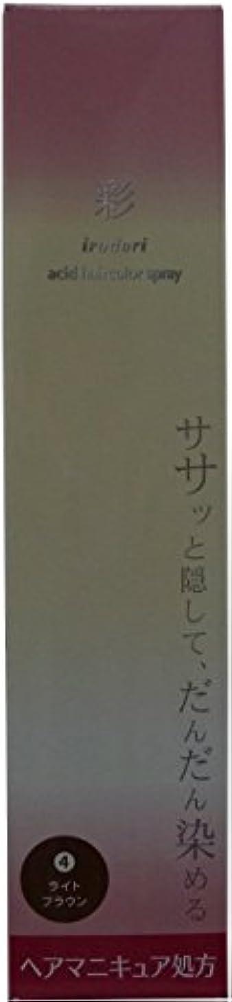 反対記念碑レビュアー彩 酸性ヘアカラースプレー 4 ライトブラウン<染毛料> 120g