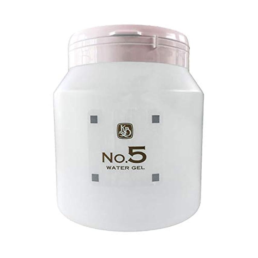 顔を洗う水 ウォーターグルNO5 1000g