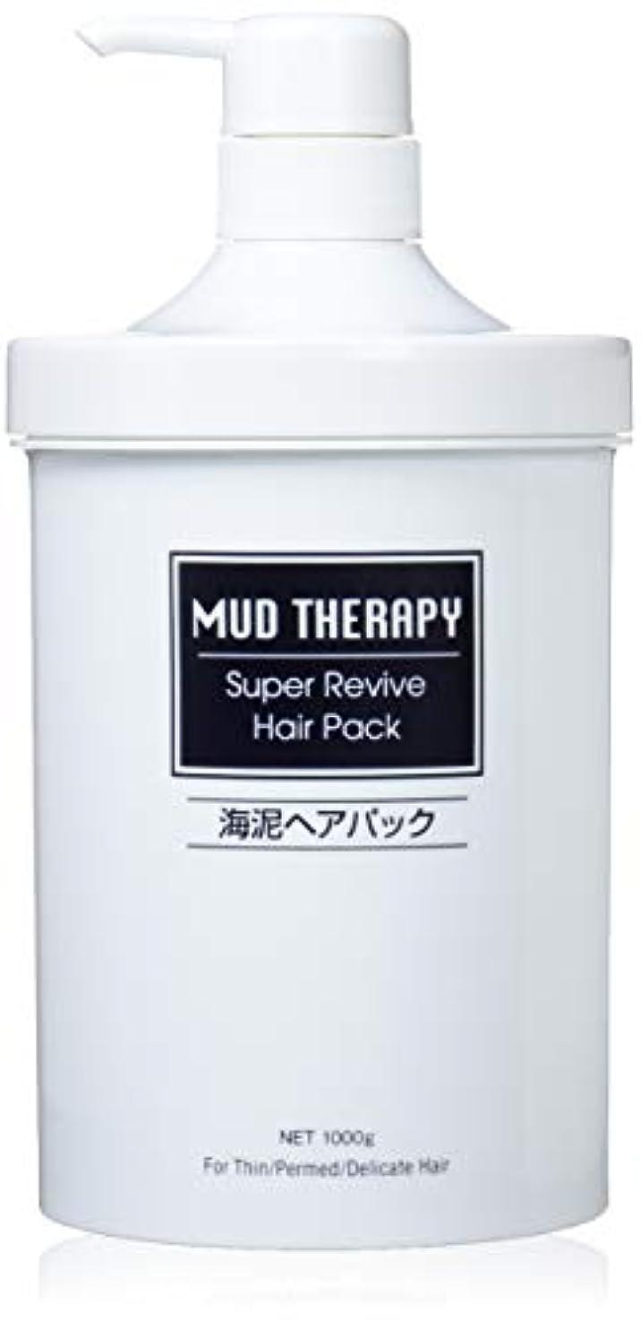 財産開業医にんじんマッドテラピー ヘアパックQ10 1000g(ポンプ)