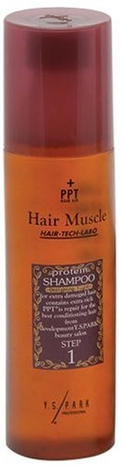 実質的に正当な美しいヘアマッスルデザイニングタイト シャンプー 300ml