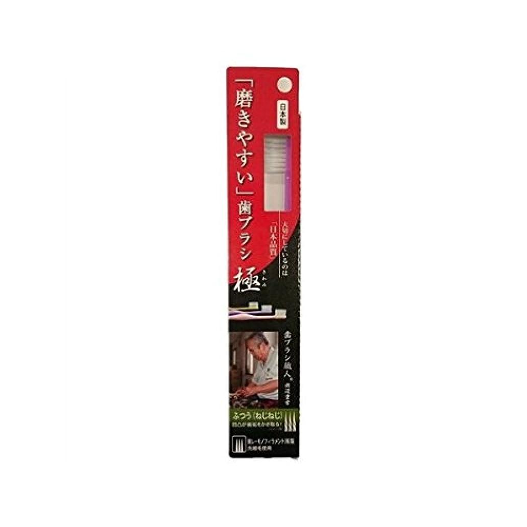 自動廊下代表するライフレンジ 磨きやすい歯ブラシ極 1P*12本入り LT-28ふつう(ねじねじ)