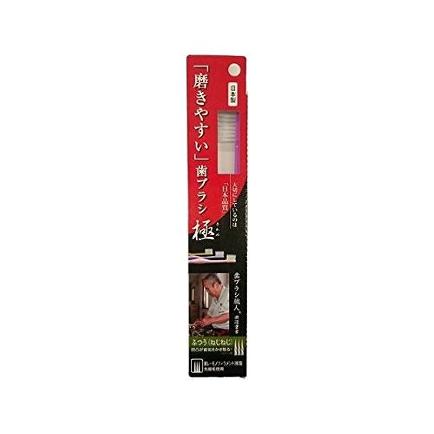 手首主要な医療のライフレンジ 磨きやすい歯ブラシ極 1P*12本入り LT-28ふつう(ねじねじ)