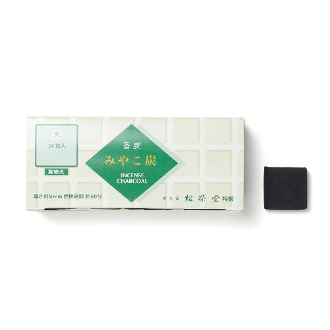 悪魔利点だます松栄堂の香炭 みやこ炭 B大24粒 緑箱 #750112