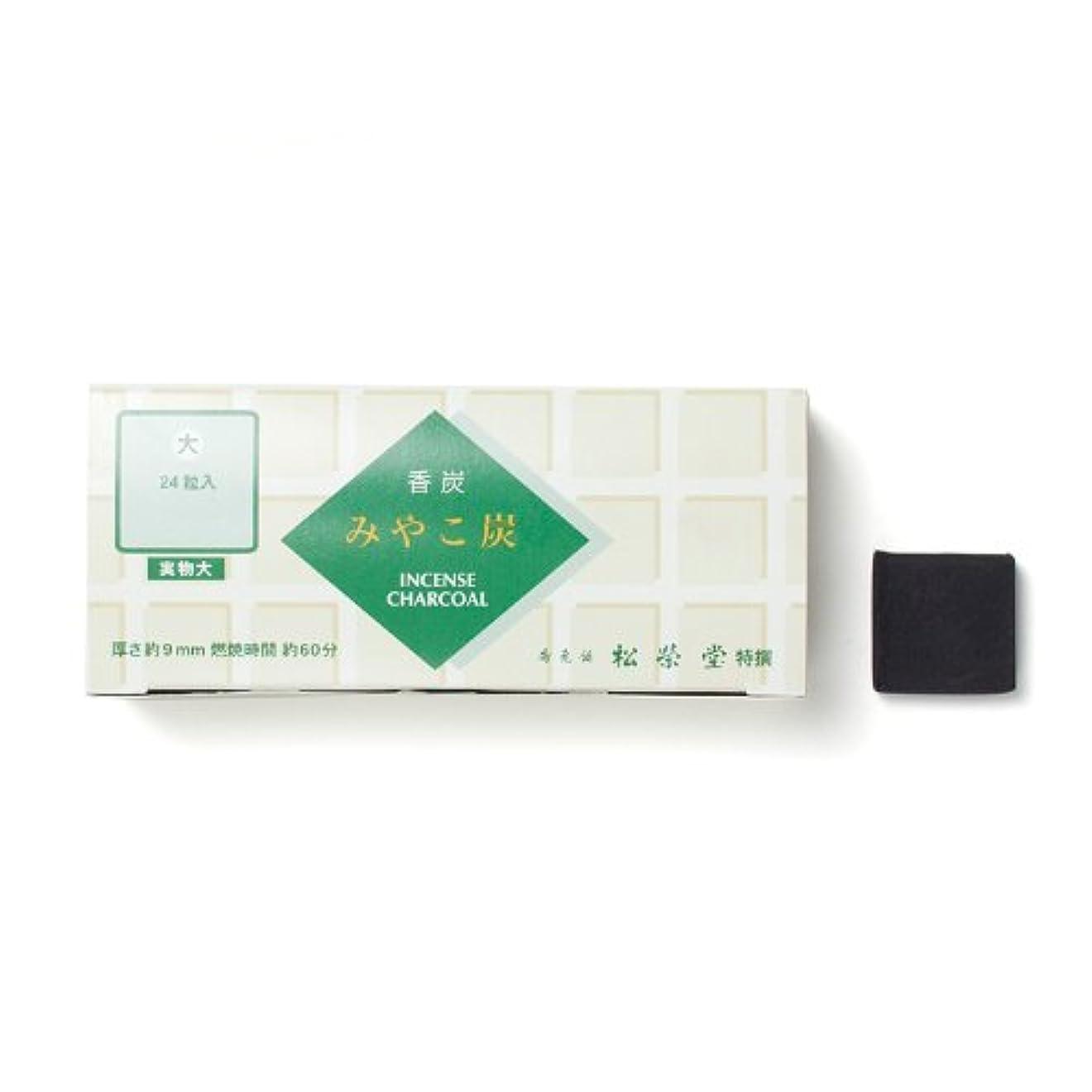 サイズ巻き戻す薬松栄堂の香炭 みやこ炭 B大24粒 緑箱 #750112