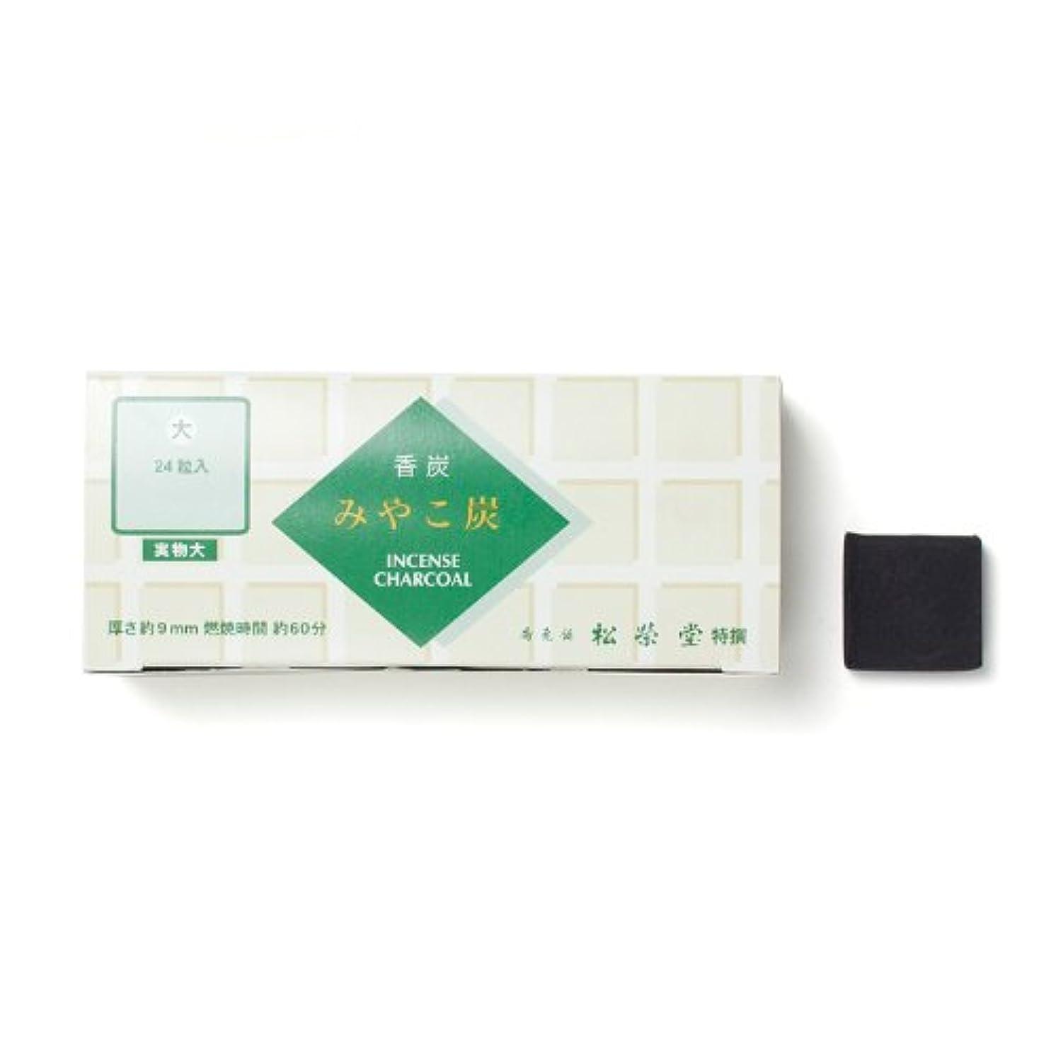 スリラー芸術高度な松栄堂の香炭 みやこ炭 B大24粒 緑箱 #750112