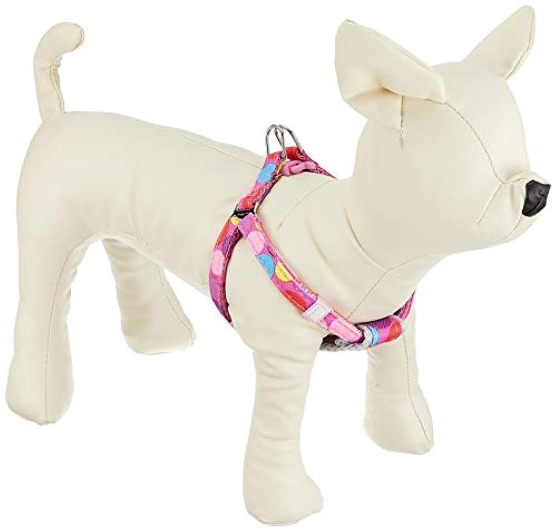 バレーボール統治可能警察ドギーマン タフタフ 胴輪 ラズベリーキャンディ 超小型犬用 SS サイズ