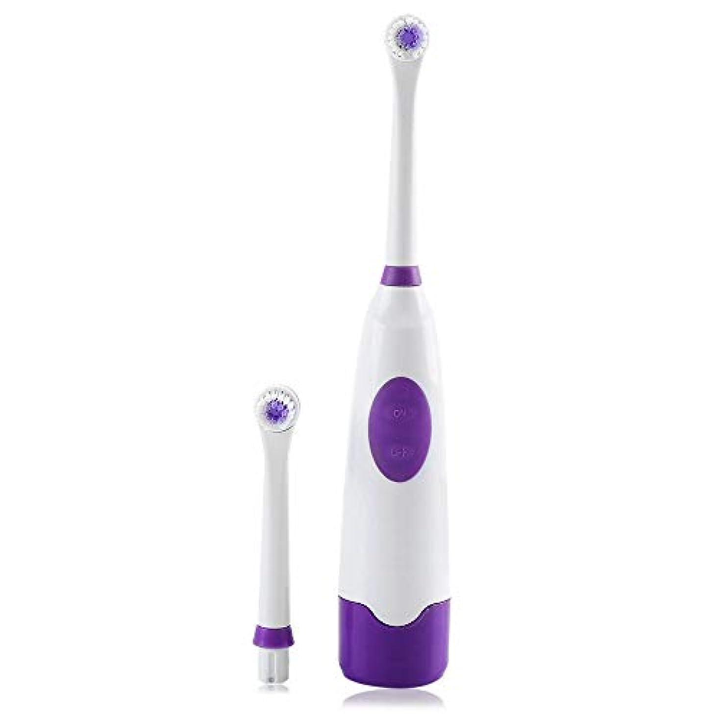 改革関与する対称ZHQI-HEAL ツールキットセットクリーナー066を白くする子供大人の歯のための2つのブラシの頭部が付いている電気口腔衛生の心配の歯ブラシ (色 : Purple)