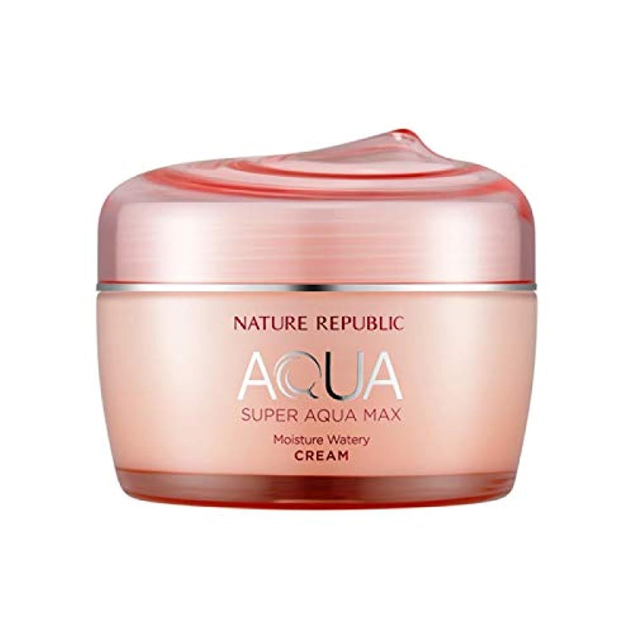 強い今晩パッチネイチャーリパブリック(Nature Republic)スーパーアクアマックスモイスチャー水分クリーム[乾性用] 80ml / Super Aqua-Max Moisture Moisture Cream (Dry Skin) 80ml :: 韓国コスメ [並行輸入品]