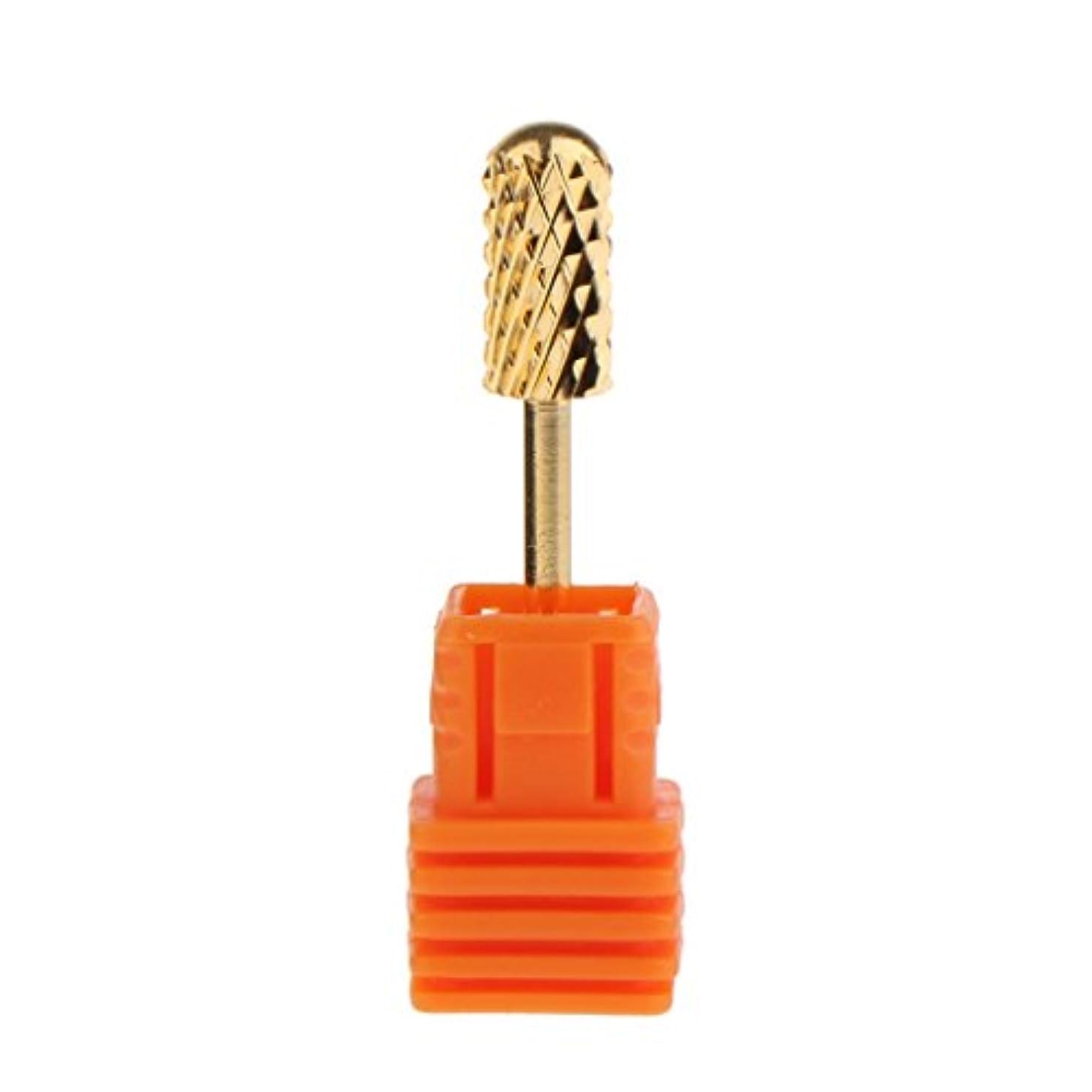 ホステル下品是正Toygogo 4つの様式の電気シリンダー炭化物ファイルドリルビットの釘の芸術のマニキュアのペディキュア用具