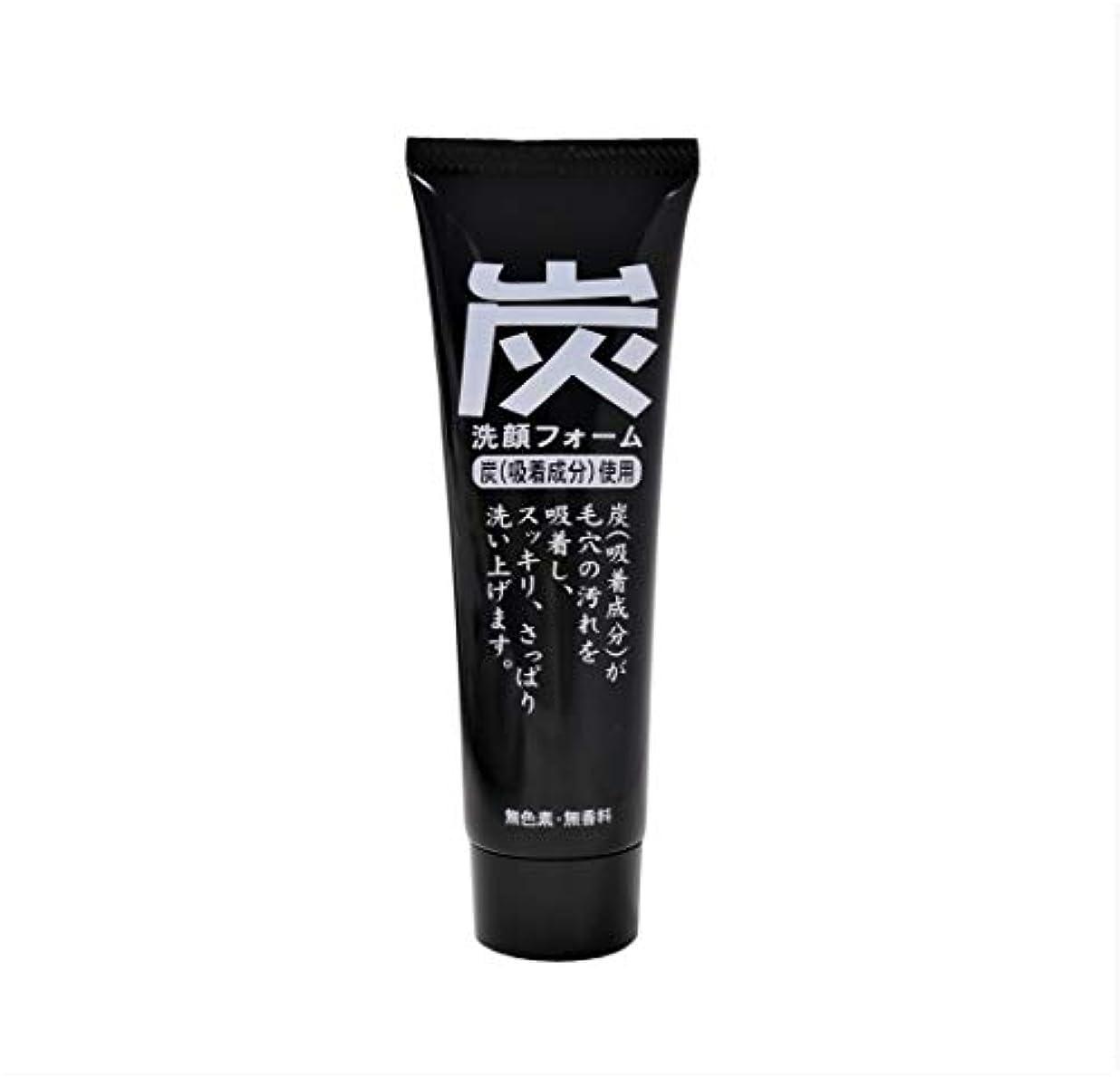 ファイバエコー銛炭洗顔フォーム