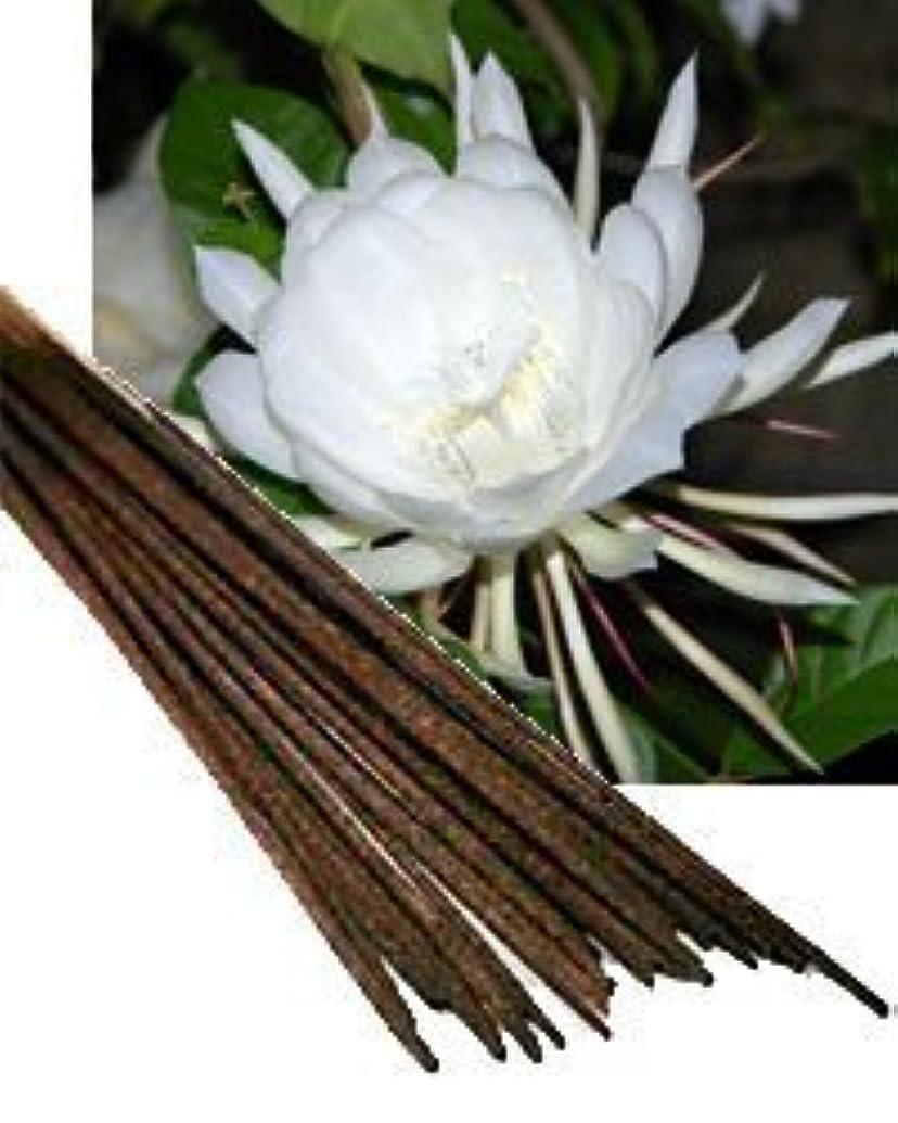読み書きのできない概して器官Night Queen Incense (Agarbatti) - (100 Gram Pack)
