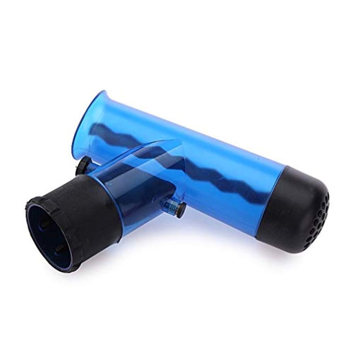 Yulili ポータブルサイズヘアドライヤーディフューザーマジック風回転取り外し可能なドライブローヘアディフューザーローラーカーラー女性ヘアスタイリングツール (Color : Blue)