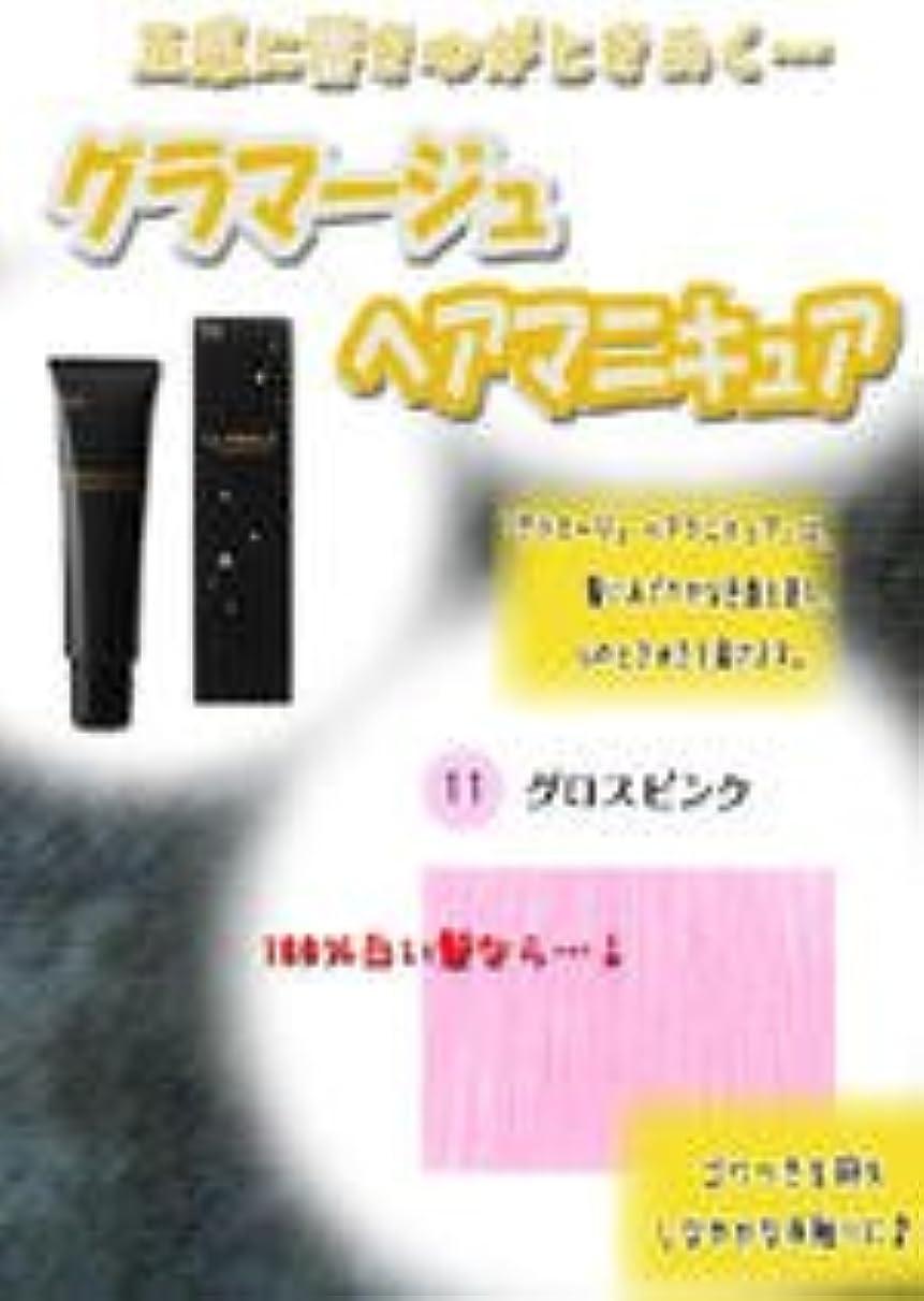 失う熱心バリアHOYU ホーユー グラマージュ ヘアマニキュア 11グロスピンク 150g 【グロス系】