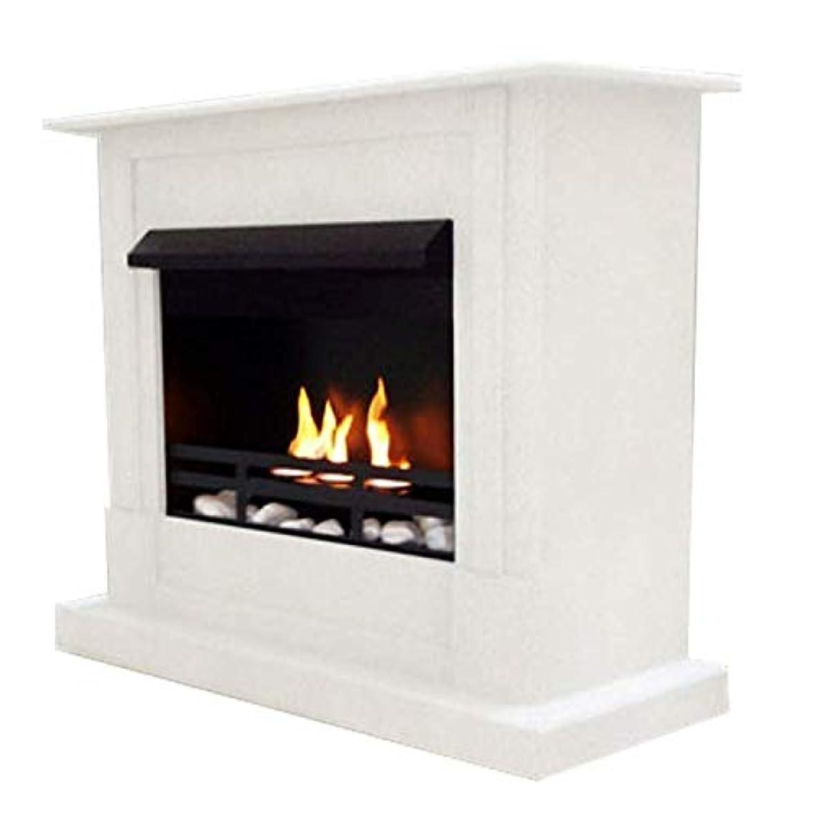 麦芽タンク偽物ジェル+ ethanol fire-places Emilyデラックスinclusive : 1調節可能なstainless-steel Burner ホワイト 10080