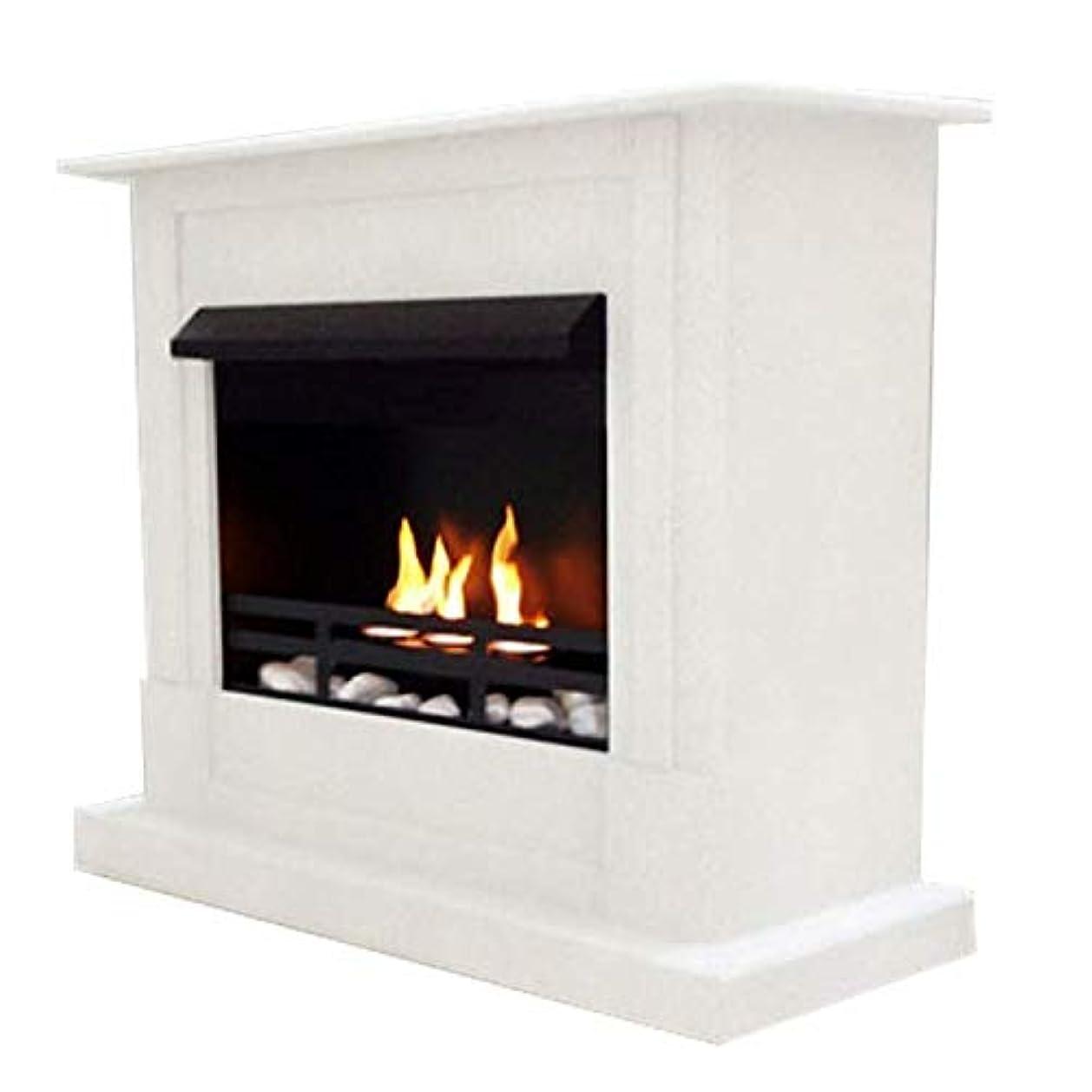 一極小休日にジェル+ ethanol fire-places Emilyデラックスinclusive : 1調節可能なstainless-steel Burner ホワイト 10080