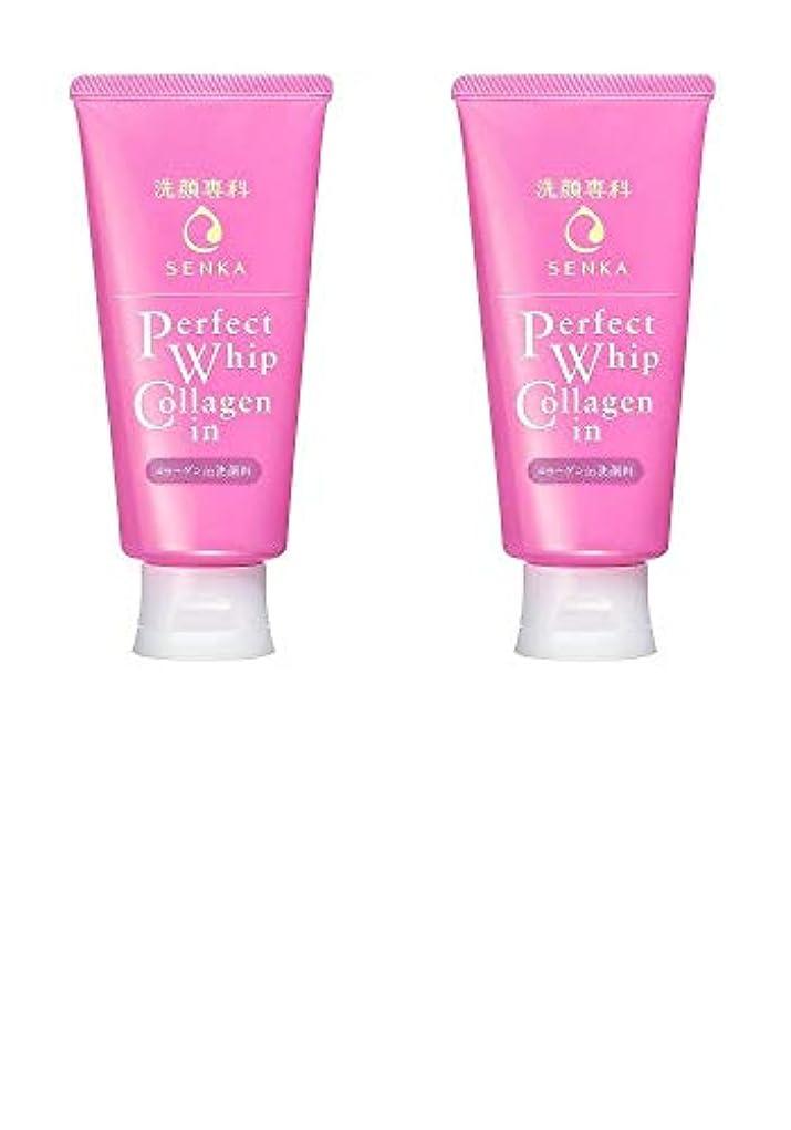 伝統待って入学する【2個まとめ買い】洗顔専科 パーフェクトホイップ コラーゲンin 120g