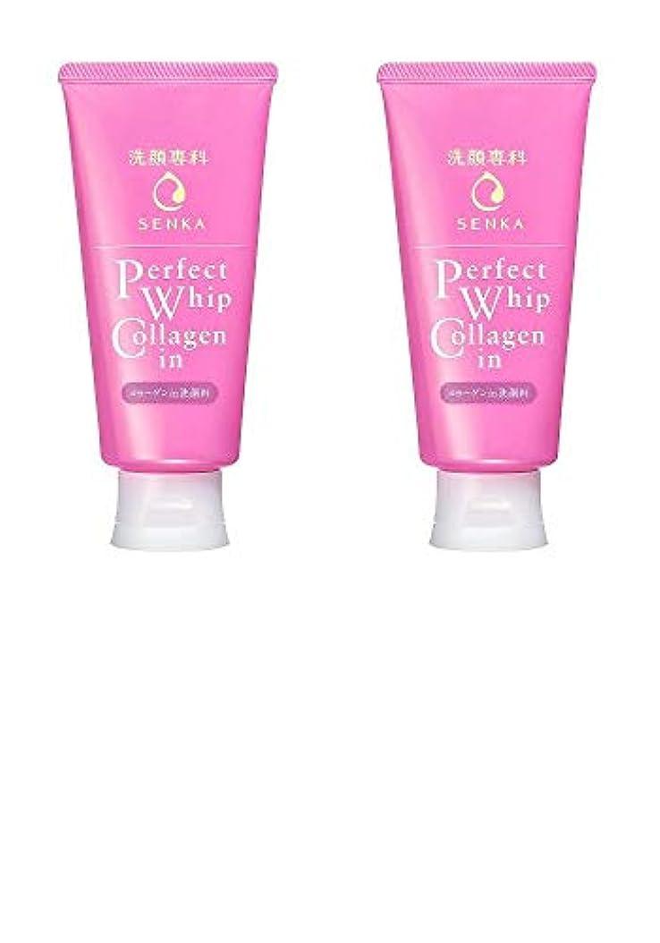 抑制する寛容なまあ【2個まとめ買い】洗顔専科 パーフェクトホイップ コラーゲンin 120g