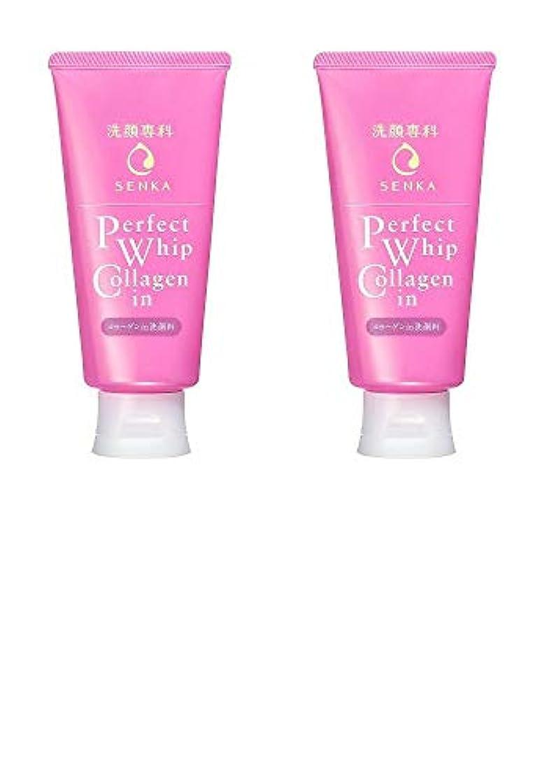 スラムためらうぞっとするような【2個まとめ買い】洗顔専科 パーフェクトホイップ コラーゲンin 120g