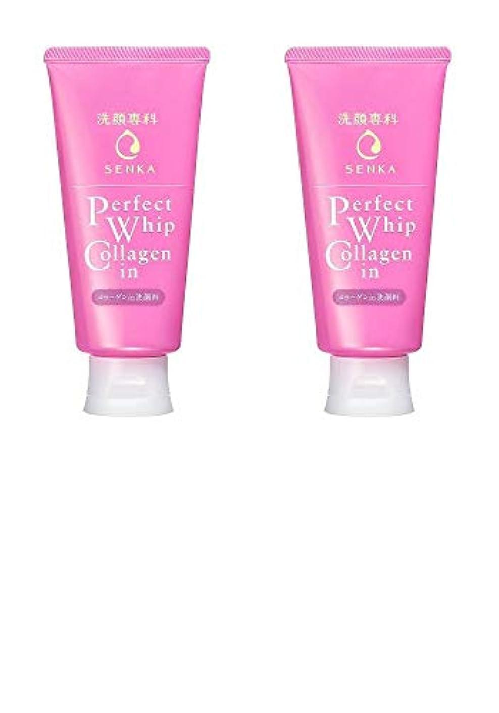 きちんとした自己巧みな【2個まとめ買い】洗顔専科 パーフェクトホイップ コラーゲンin 120g