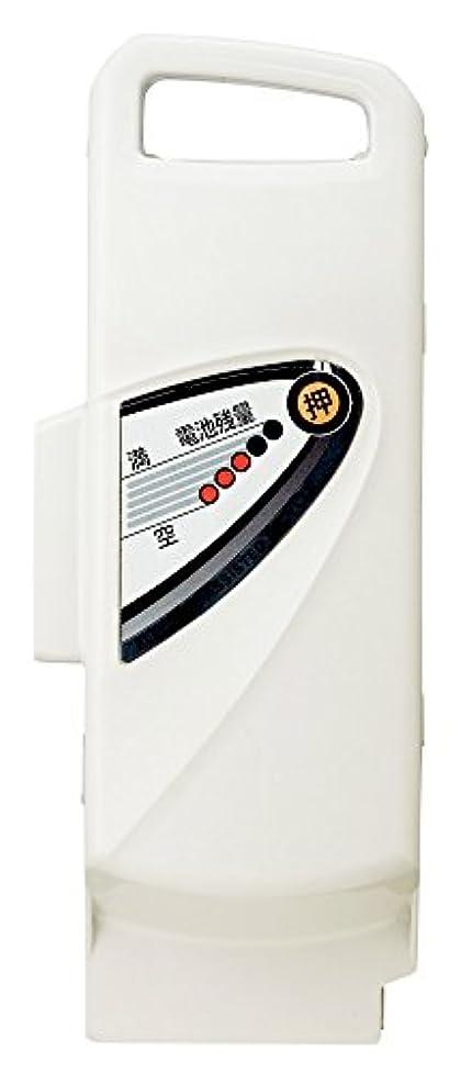 岸スーツケース報復するPanasonic(パナソニック) リチウムイオンバッテリー NKY449B02B/25.2V-8.9Ah グレー グレー