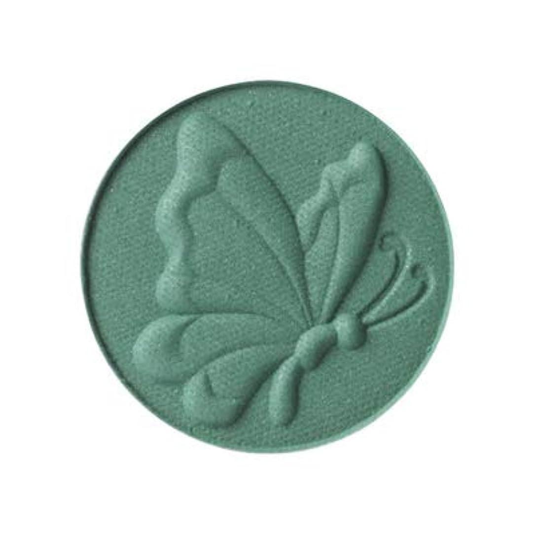 アナスイ/ANNA SUI アイ & フェイスカラー #B900 (リフィル) [ アイシャドウ?チーク ] [並行輸入品]