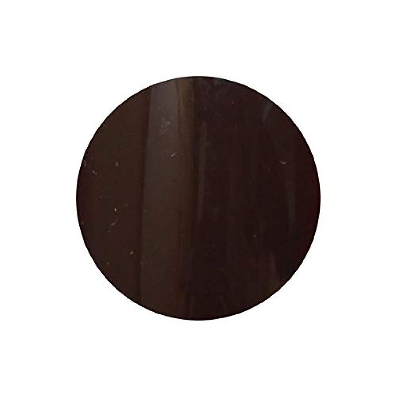 強制的ウォーターフロントタッチ【NEW】T-GEL COLLECTION カラージェル D222 ディープブラウン 4ml