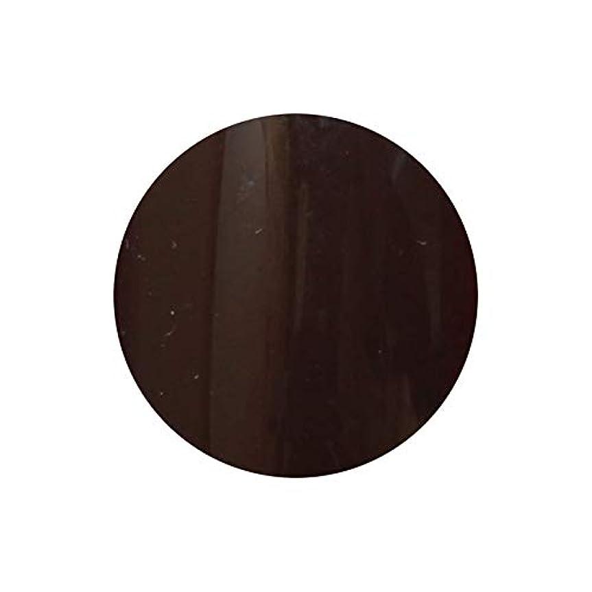 記念日慎重週間【NEW】T-GEL COLLECTION カラージェル D222 ディープブラウン 4ml