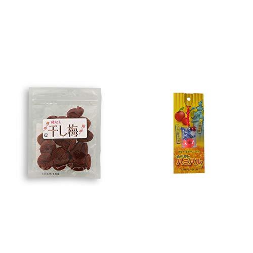 [2点セット] 種なし干し梅(90g)・信州・飯田のシンボル 時の番人ハミパルくんストラップ