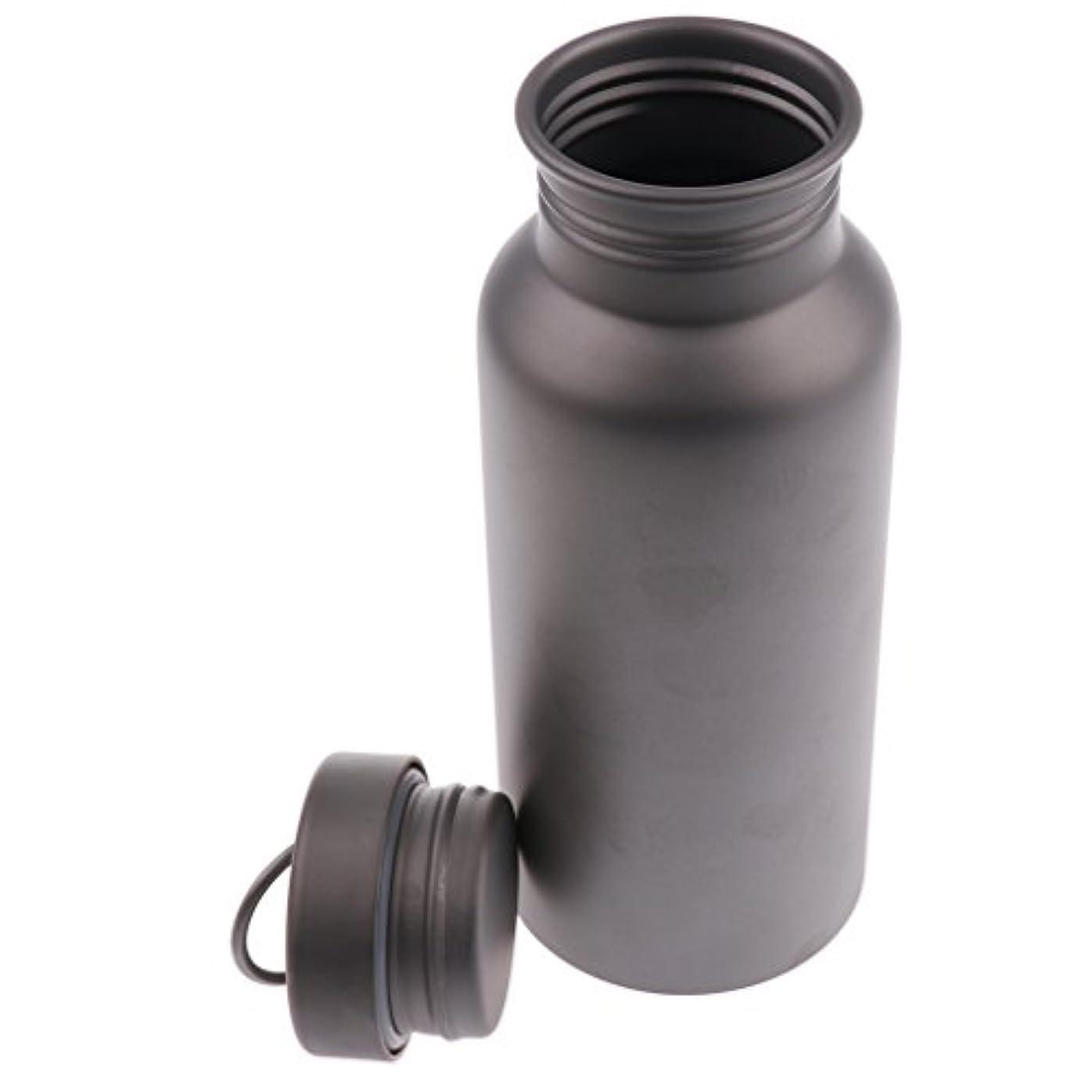 ブルームひどく道徳のDYNWAVE チタン スポーツ 断熱 水ボトル 漏れ防止 ティーポット 釣り キャンプ 全3サイズ