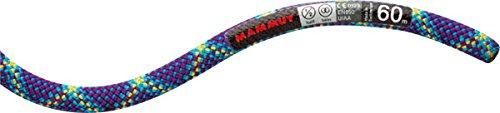 MAMMUT マムート 8.0 Phoenix Protect 50m 登山クライミングロープ 2010-02780 Protect Standard ブルー