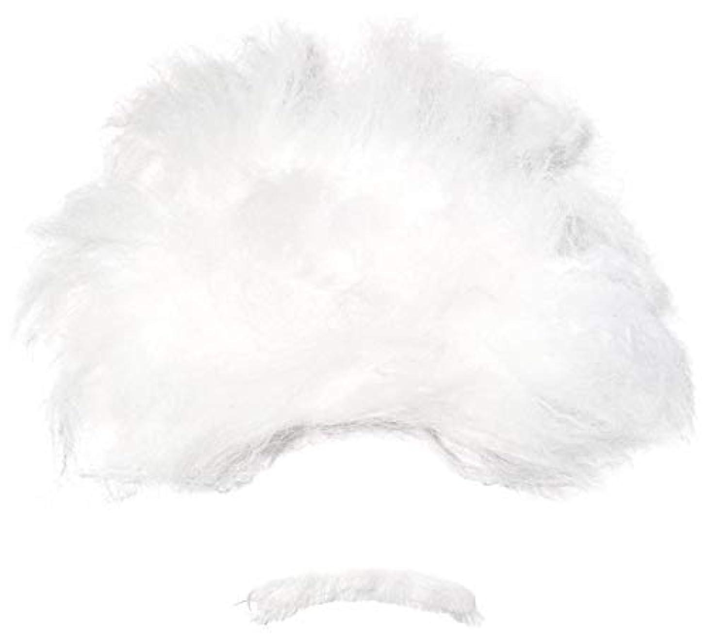 適切な負荷インストラクター[フォーラム ノベルティ]Forum Novelties Heroes In History Albert Einstein Costume Wig and Mustache RU54708 [並行輸入品]