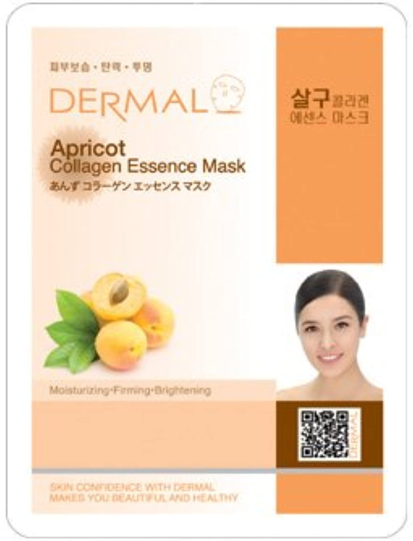 影響力のある聖歌放射するシート マスク あんず ダーマル Dermal 23g (10枚セット) 韓国コスメ フェイス パック
