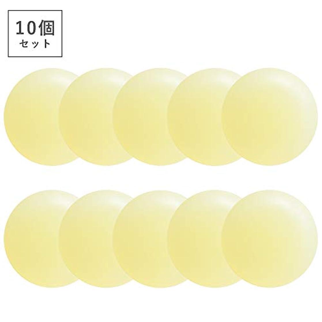 パノラマ慣らす加入【10個セット】ミョウバン柿渋石鹸(ナチュラルクリアソープ) (10個)