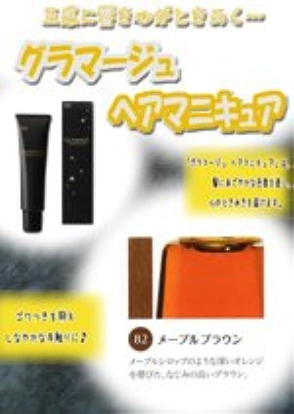 おびえた省略香りHOYU ホーユー グラマージュ ヘアマニキュア 82 メープルブラウン 150g 【ブラウン系】